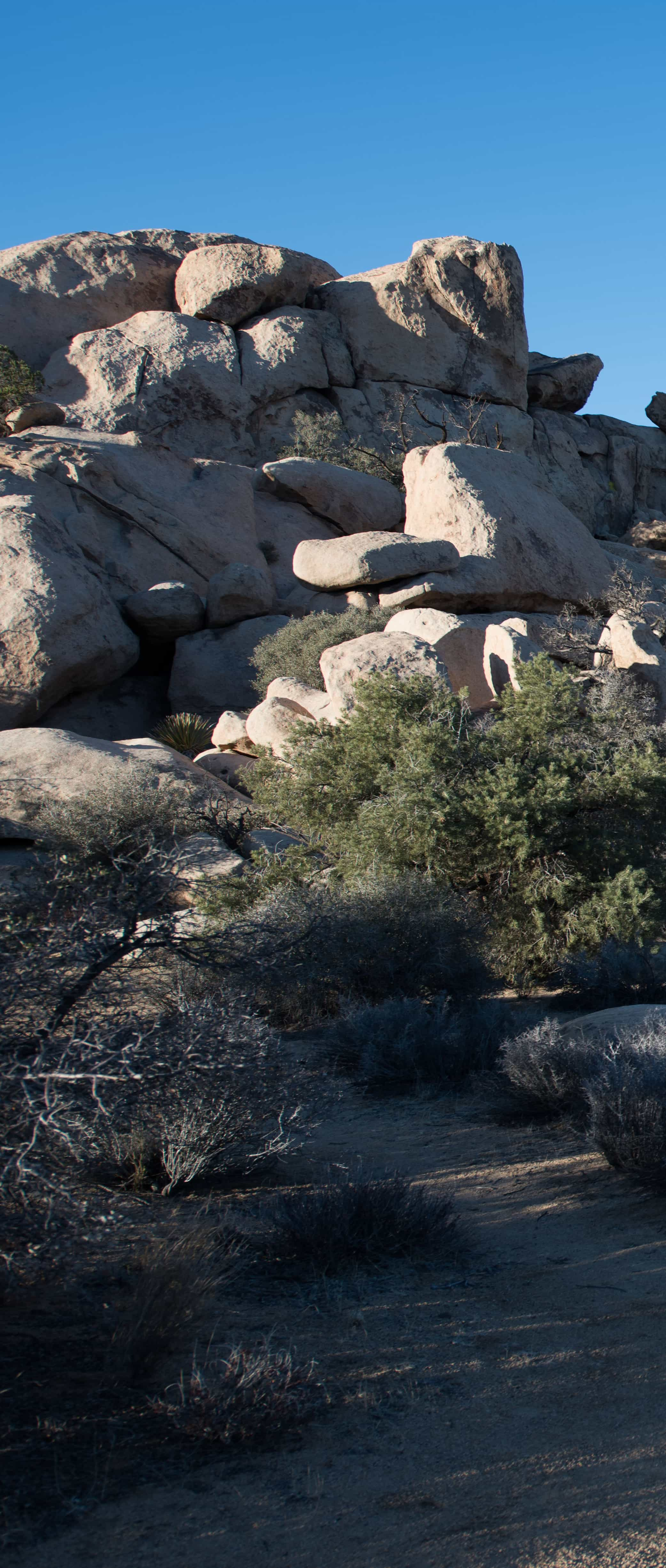 Joshua Tree Geology