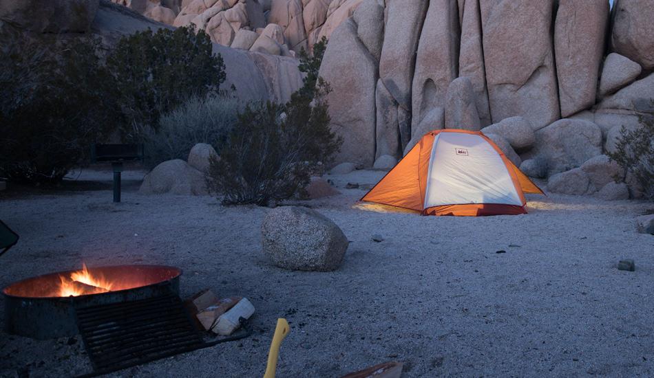 Joshua Tree Camping Night