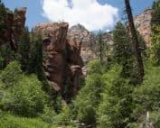 Sedona Hiking West Fork Trail